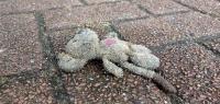 Двухлетний ребенок пострадал в ДТП в Балахнинском районе