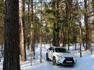 Lexus RX: Только выигрывать - фотография 38